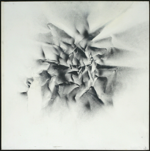 Image for Evolution of an Illusion, #05 (in a Series of 21), 1970